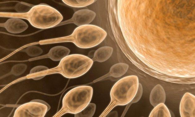 badanie spermy