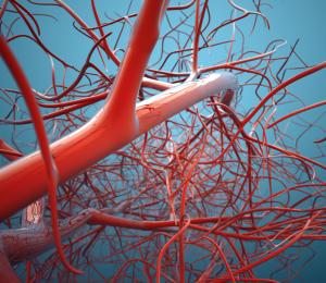 lidzbark welski badania krwi cennik