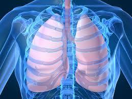 spirometria lodz,badanie spirometryczne, pochp, Przewlekła obturacyjna choroba płuc, spirometria, poradnia chorób płuc