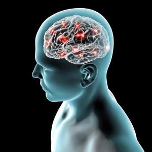 neurolog łódź, specjalista neurologii, lekarz neurolog w łodzi, poradnia neurologiczna, choroby neurologiczne, układ nerwowy, choroby układu nerwowego