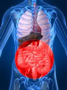gastroenterolog gdynia