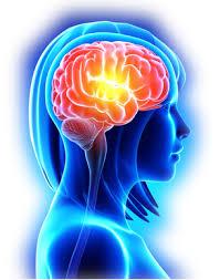 choroby neurologiczne, neurolog gdynia, poradnia neurologiczna w gdyni