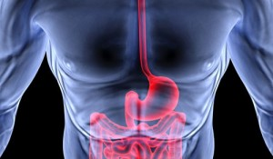 gastrolog gdańsk, gastroenterolog gdańsk, poradnia gastrologiczna gdańśk, poradnia gastroenterologiczna gdańsk