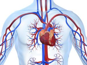 Poradnia kardiologiczna Nowy Sącz