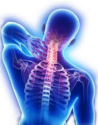 choroby neurologiczne, poradnia neurologiczna, specjalista neurolog, neurolog gdańsk
