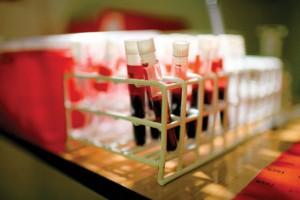 badania krwi wyszków