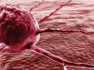 markery nowotworowe