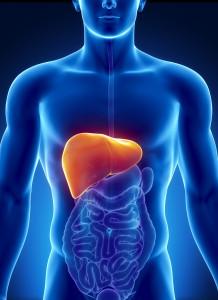 Jakie są najczęstsze choroby wątroby?