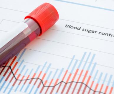 Gmina Poraj, cennik badania krwi