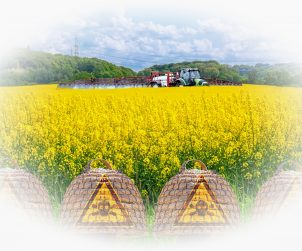 Badanie poziomu herbicydu glifosatuatu